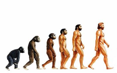 Evolution Penis 110