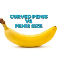 Curved Penis vs Penis Size